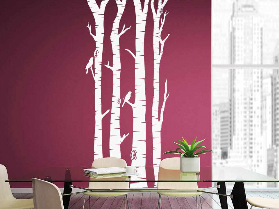 Weiße Birken Als Wandtattoo Auf Farbiger Wand