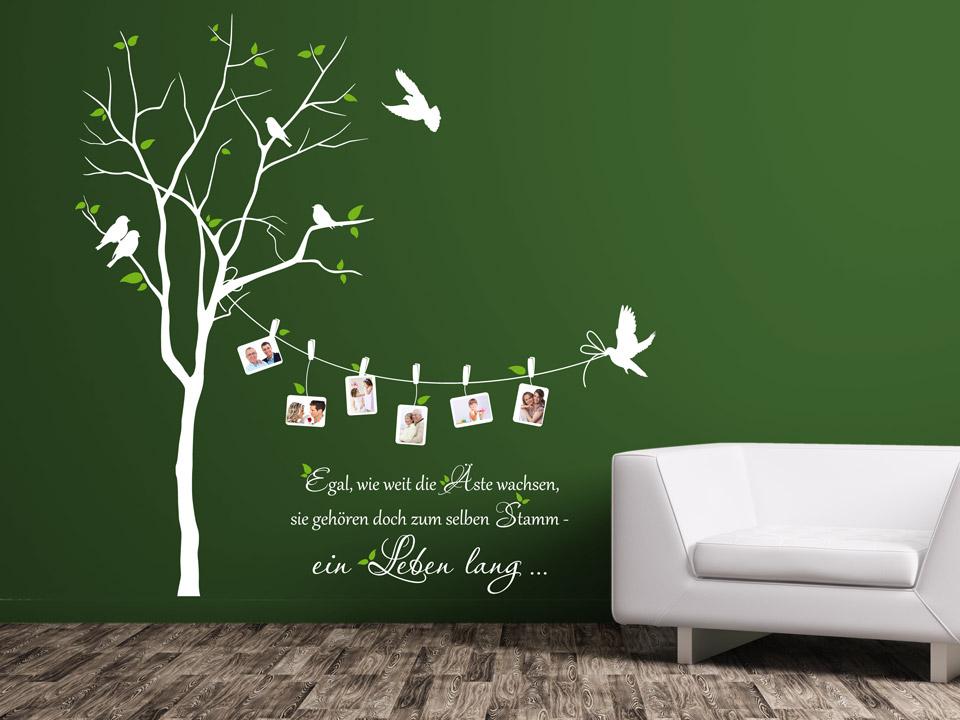 wandtattoo baum mit fotos und v geln. Black Bedroom Furniture Sets. Home Design Ideas